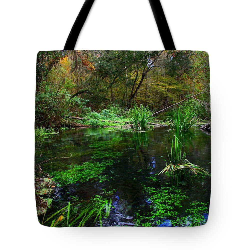 Ichnetucknee Springs Tote Bag featuring the photograph A Hint Of Fall At Ichnetucknee Springs by Barbara Bowen
