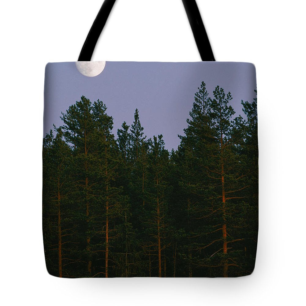 The Moon Tote Bag featuring the photograph A Huge Moon, With Features Clearly by Mattias Klum