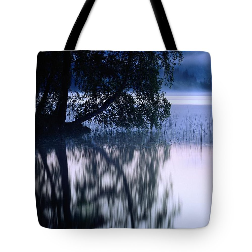 Plants Tote Bag featuring the photograph A Large Tree Grows At The Edge by Mattias Klum