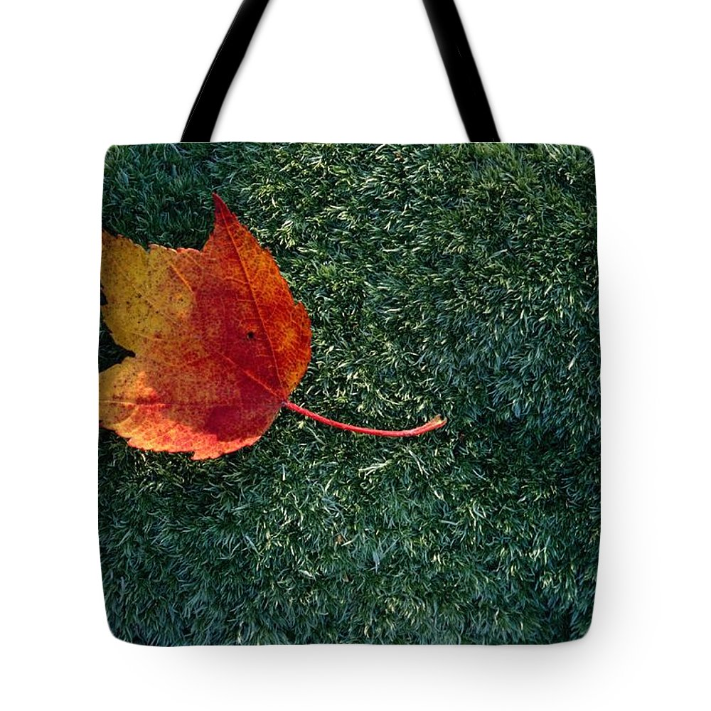 Shenandoah Valley Tote Bag featuring the photograph A Maple Leaf Lies On Emerald Moss by George F. Mobley