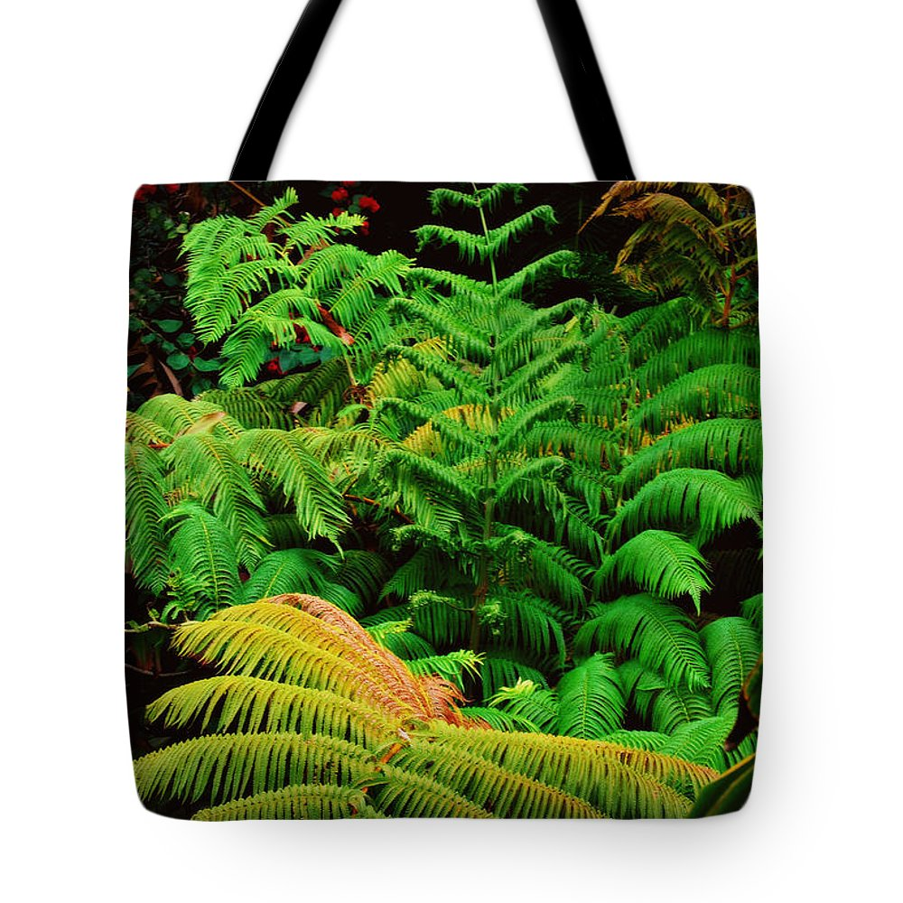 Hawaii Tote Bag featuring the photograph A Mass Of Ferns by Paulette B Wright