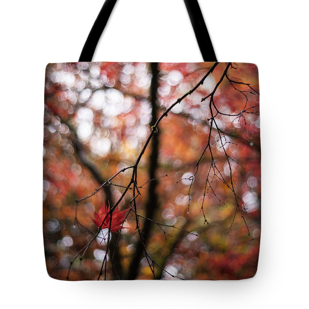 Acer Tote Bag featuring the photograph A Pair by Mike Reid
