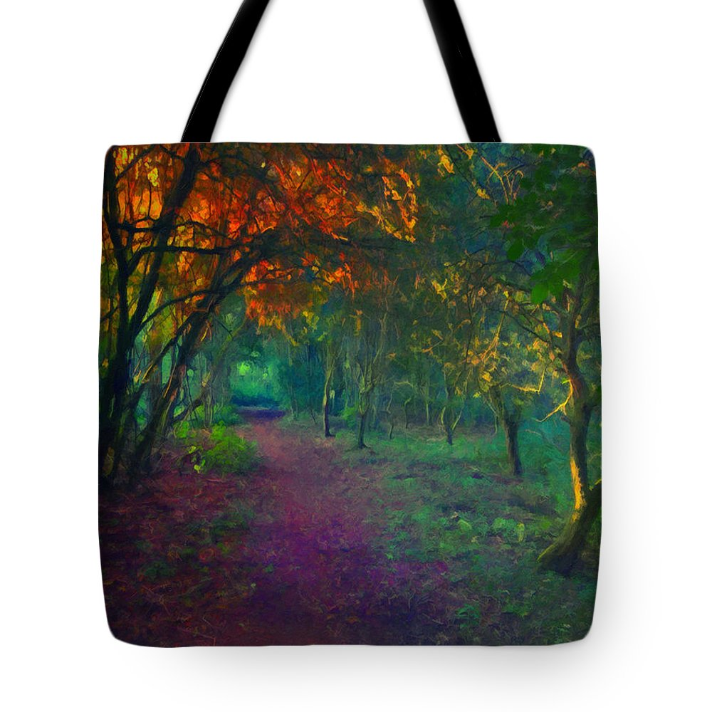 Www.themidnightstreets.net Tote Bag featuring the painting A Place Of Mystery by Joe Misrasi