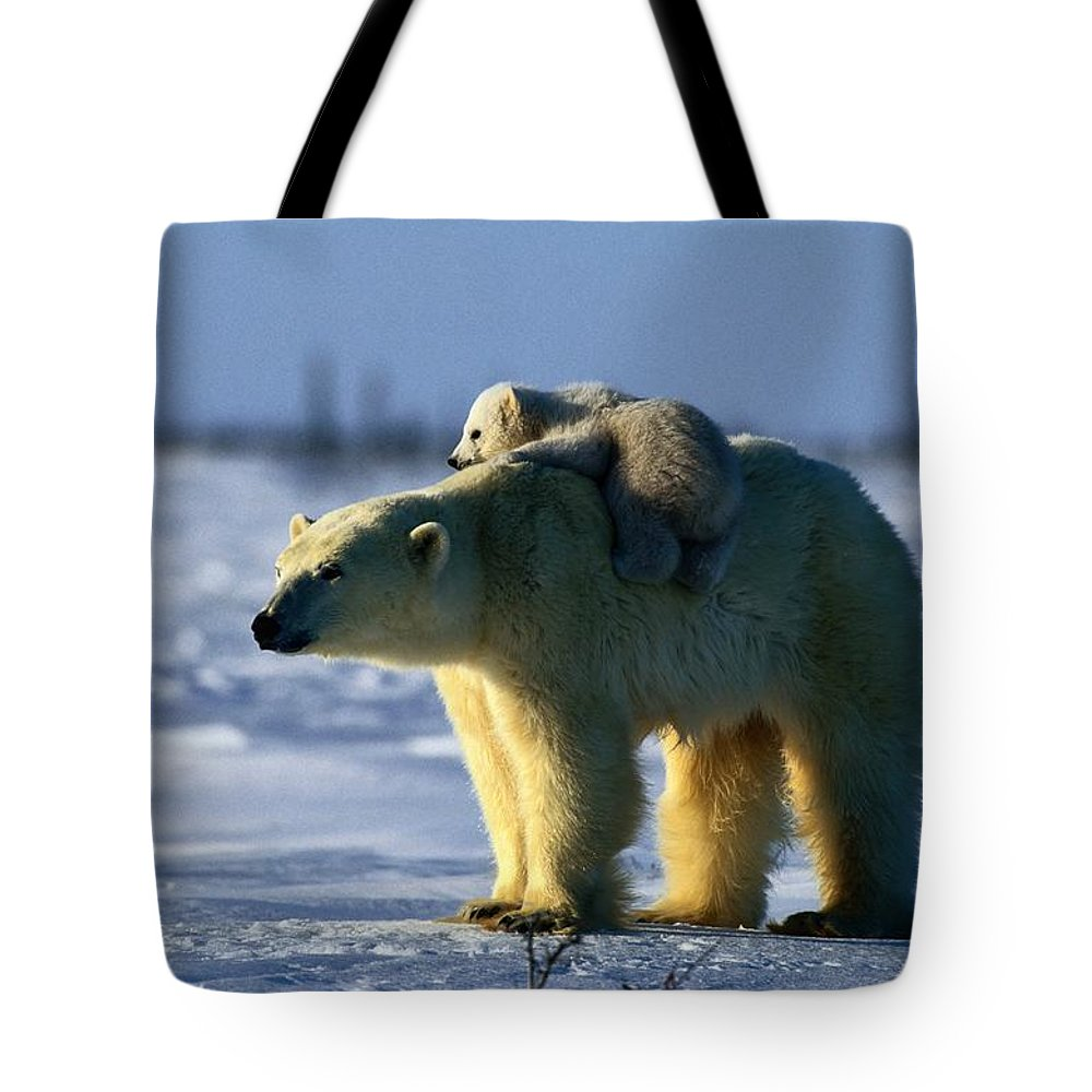 Outdoors Tote Bag featuring the photograph A Polar Bear Mother With Her Cub by Norbert Rosing