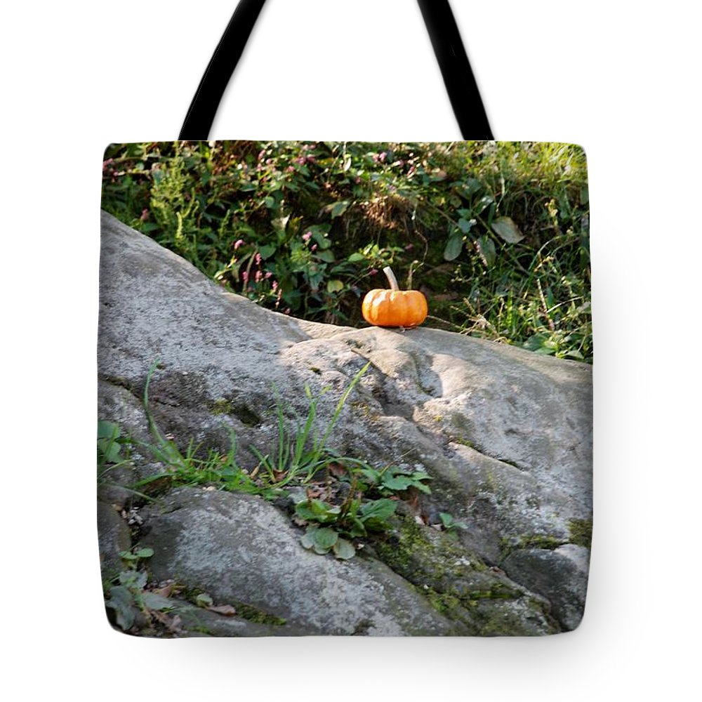 Central Park Tote Bag featuring the photograph A Pumpkin In Central Park by Rob Hans