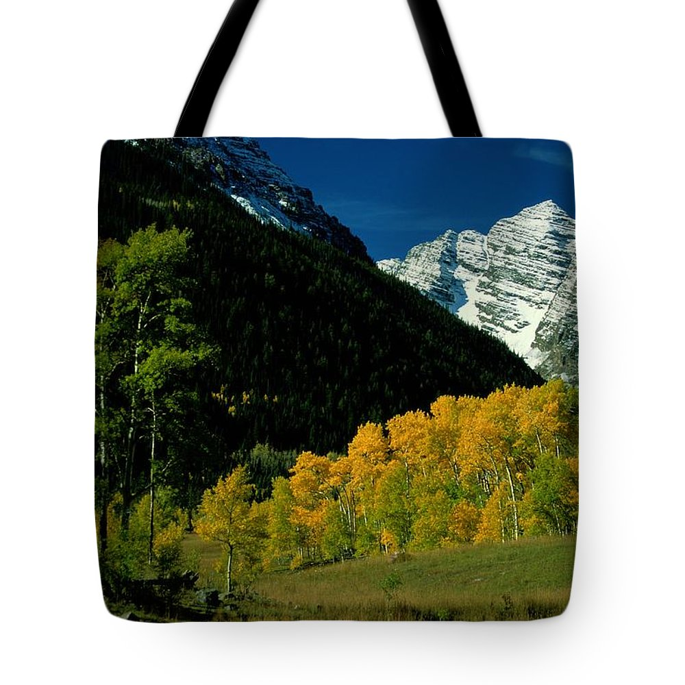 Scenic Views Tote Bag featuring the photograph A Scenic View Of Yellow And Green Trees by Paul Chesley