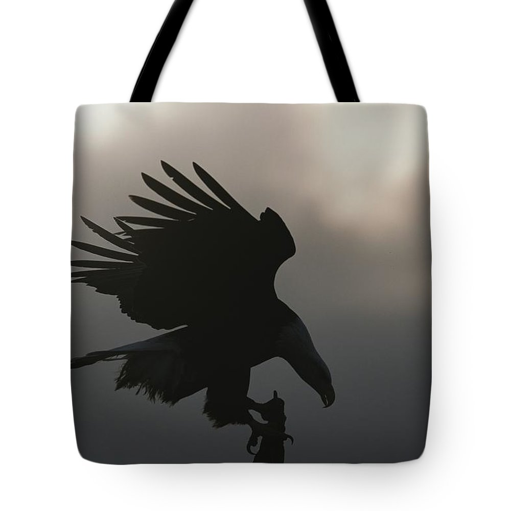 North America Tote Bag featuring the photograph A Silhouetted Northern American Bald by Norbert Rosing