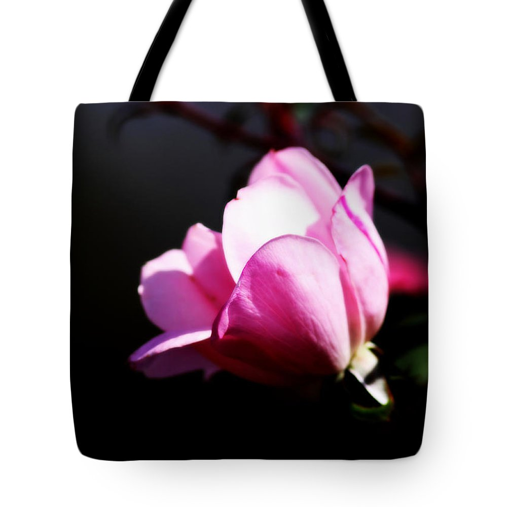 Rose Tote Bag featuring the photograph A Simple Rose by Travis Truelove