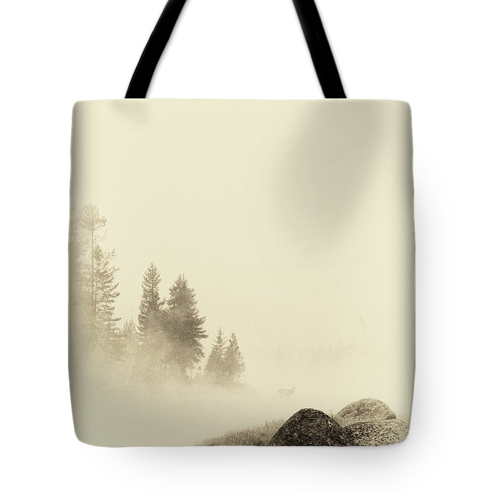 Wyoming Tote Bag featuring the photograph A Simple Silence by Carolyn Fox