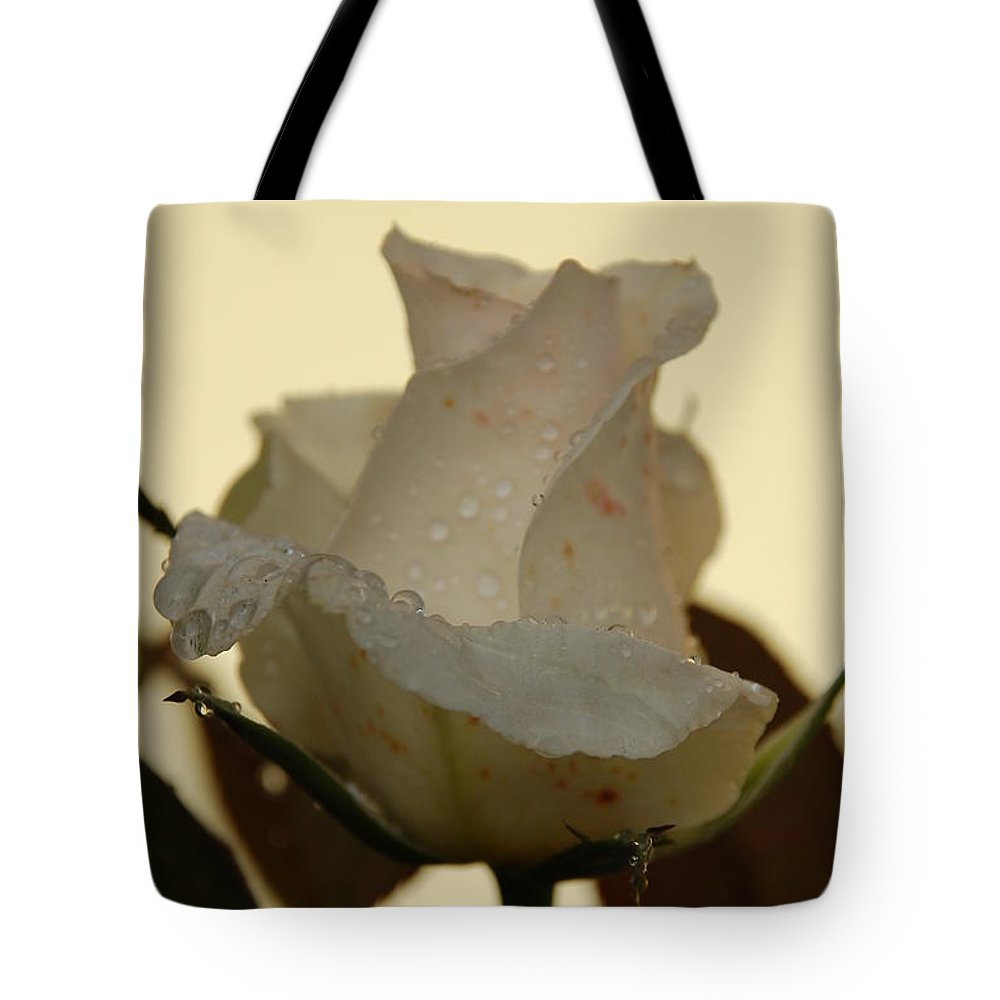 Rose Tote Bag featuring the photograph A Single White Rose by Randy J Heath