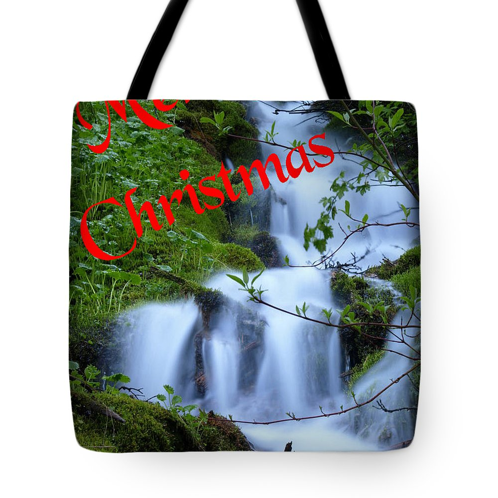 Christmas Cards Tote Bag featuring the photograph A Snowless Christmas by DeeLon Merritt