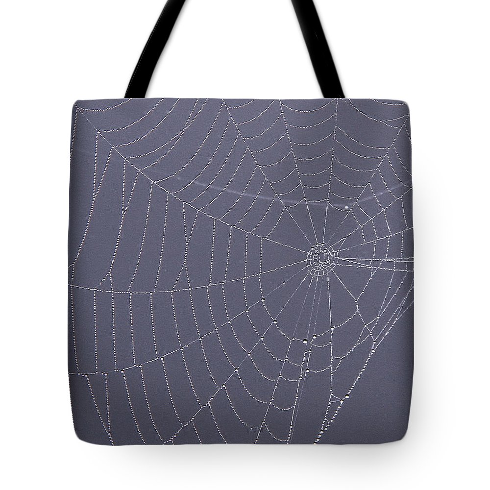 Spider Web Tote Bag featuring the photograph A Spider's Handiwork by Doris Potter