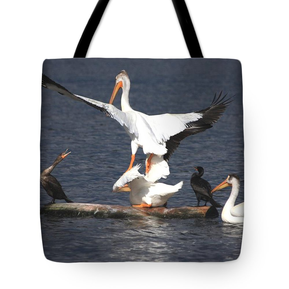 Pelican Tote Bag featuring the photograph A Step Ahead by Shane Bechler