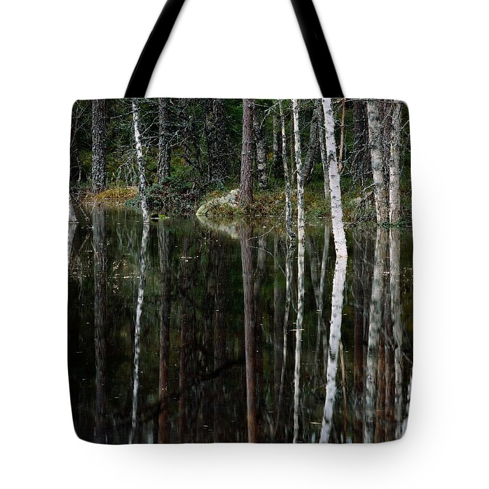Scenic Views Tote Bag featuring the photograph A Stream At High Water In A Woodland by Mattias Klum
