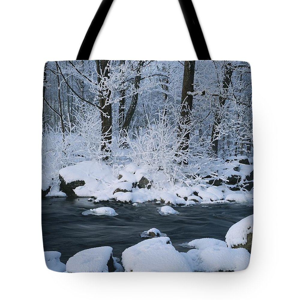 Scenes And Views Tote Bag featuring the photograph A Stream Running Through Snowy Woodland by Mattias Klum