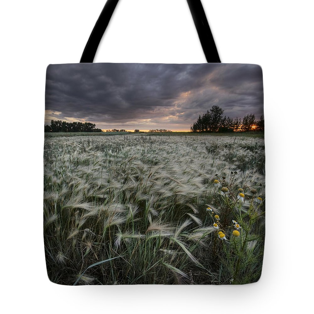 Cloudy Tote Bag featuring the photograph A Summer Sunrise With Storm Clouds by Dan Jurak