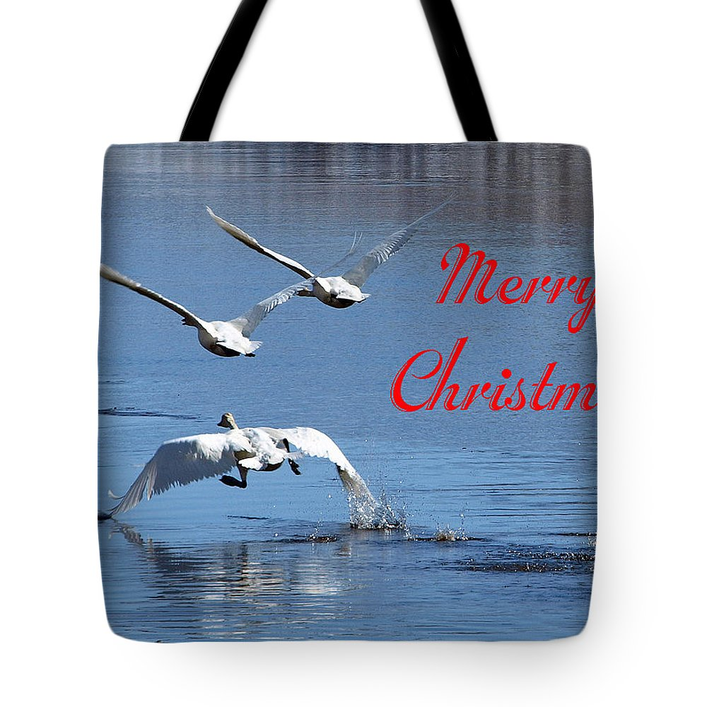 Christmas Cards Tote Bag featuring the photograph A Swan Christmas by DeeLon Merritt