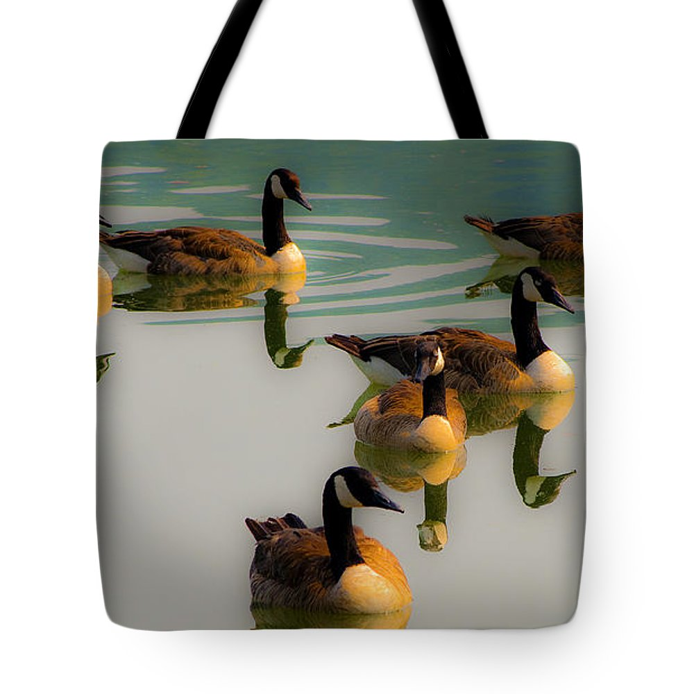 Birds Tote Bag featuring the photograph A Swim At Sunset by Paul W Faust - Impressions of Light