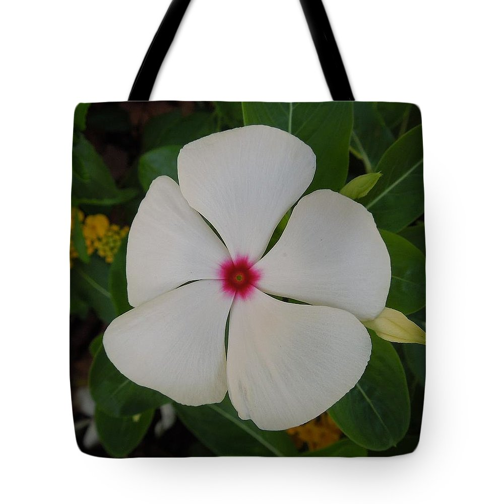 Vinca Tote Bag featuring the photograph A White Star With A Red Center by Chad and Stacey Hall