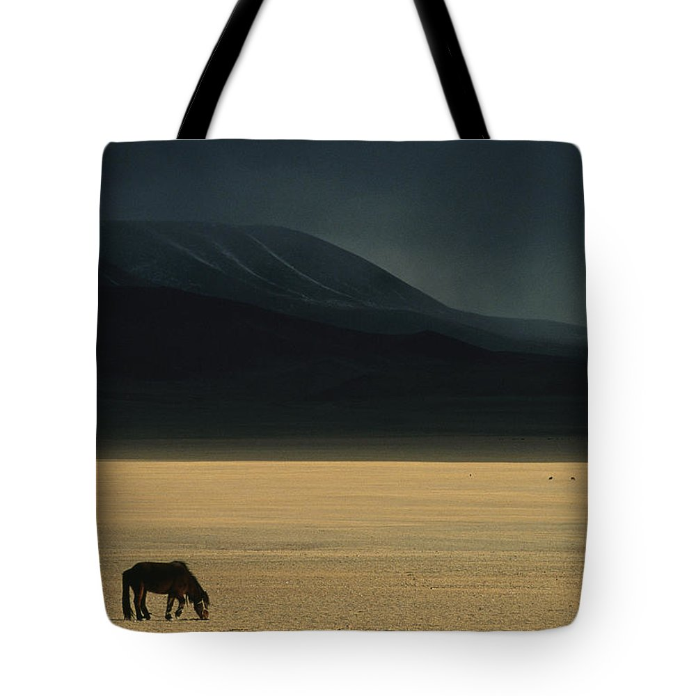 Asia Tote Bag featuring the photograph A Winter Storm Rolls In Over A Horse by David Edwards