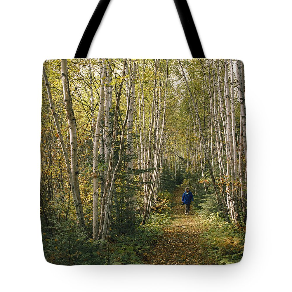 North America Tote Bag featuring the photograph A Woman Walks Down A Birch Tree-lined by George F. Mobley