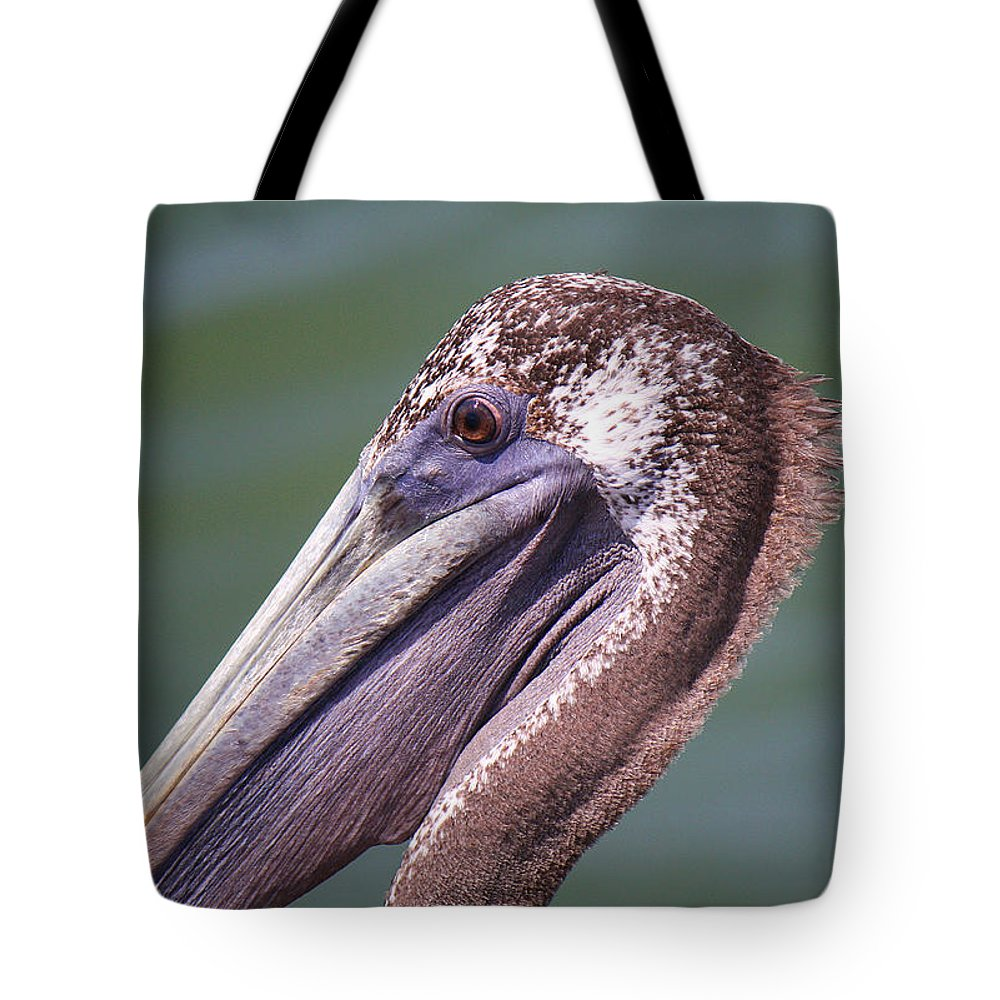 Roena King Tote Bag featuring the photograph A Young Brown Pelican by Roena King