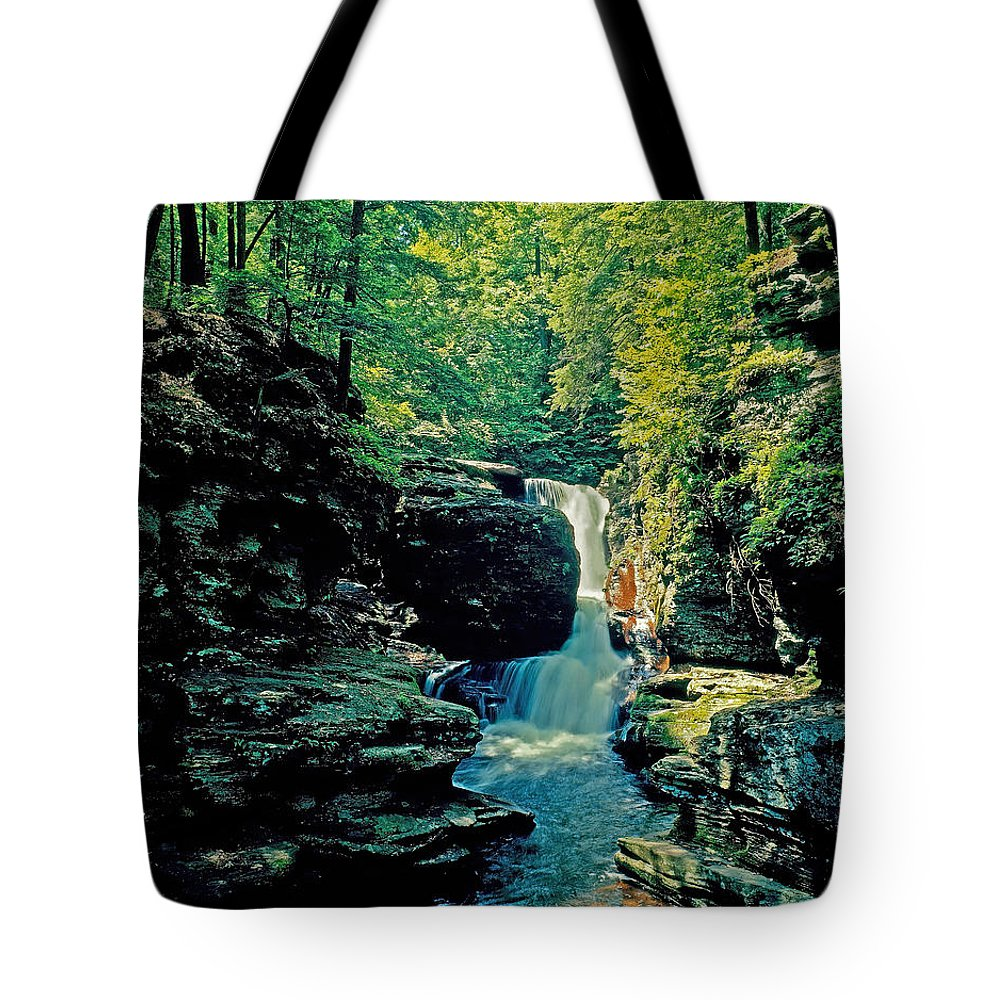 Pennsylvania Tote Bag featuring the photograph Adams Falls by Rich Walter