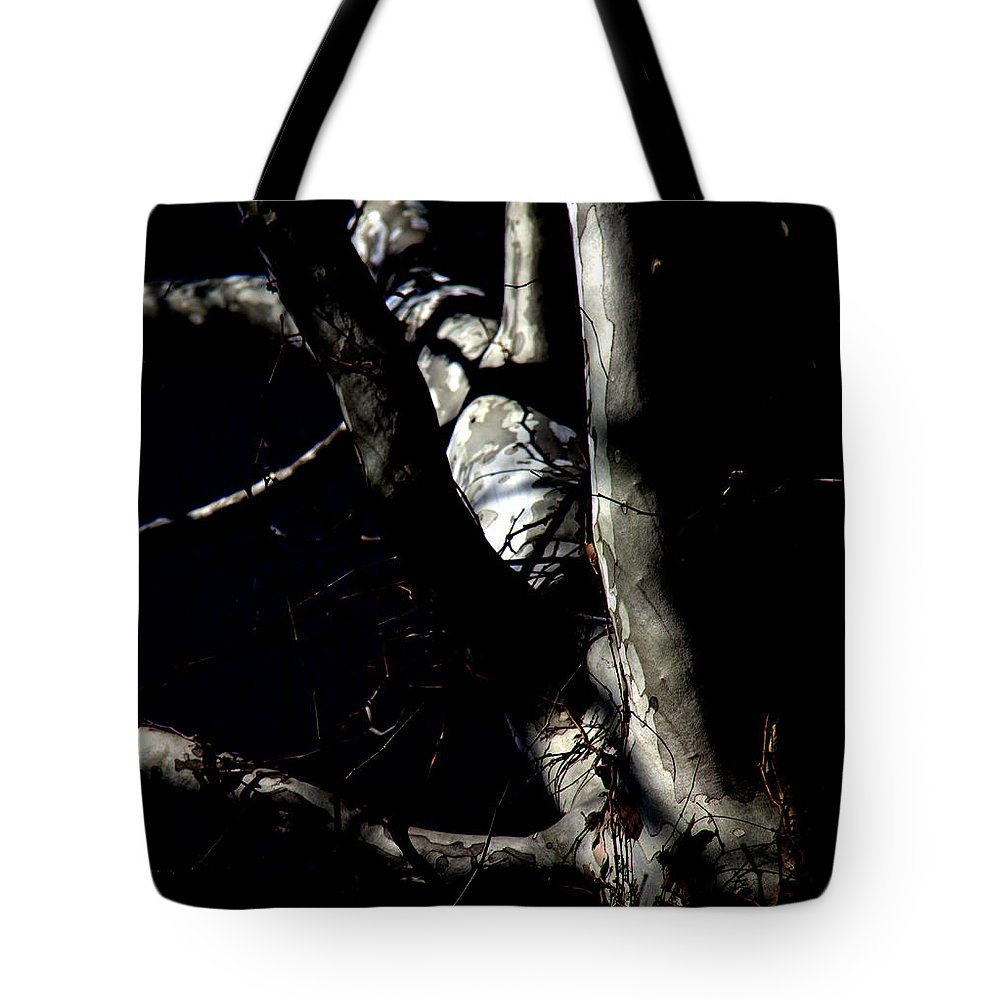 After Dark Tote Bag featuring the photograph After Dark by Ed Smith