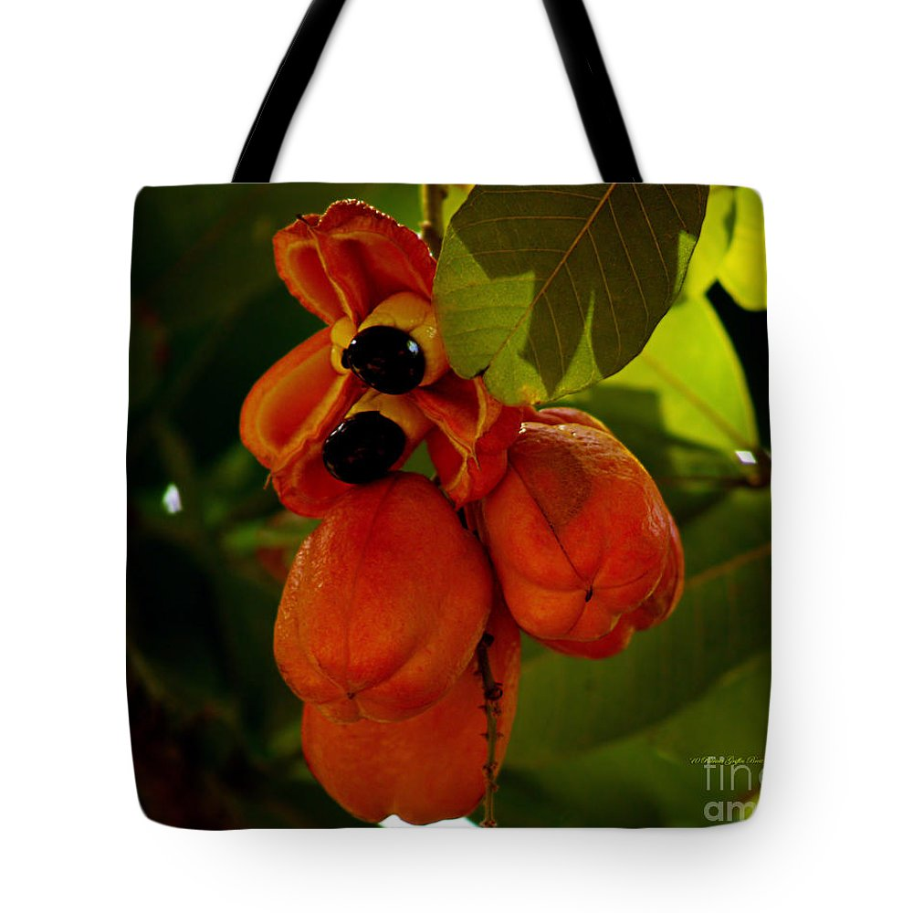 Fine Art Photography Tote Bag featuring the photograph Akee by Patricia Griffin Brett