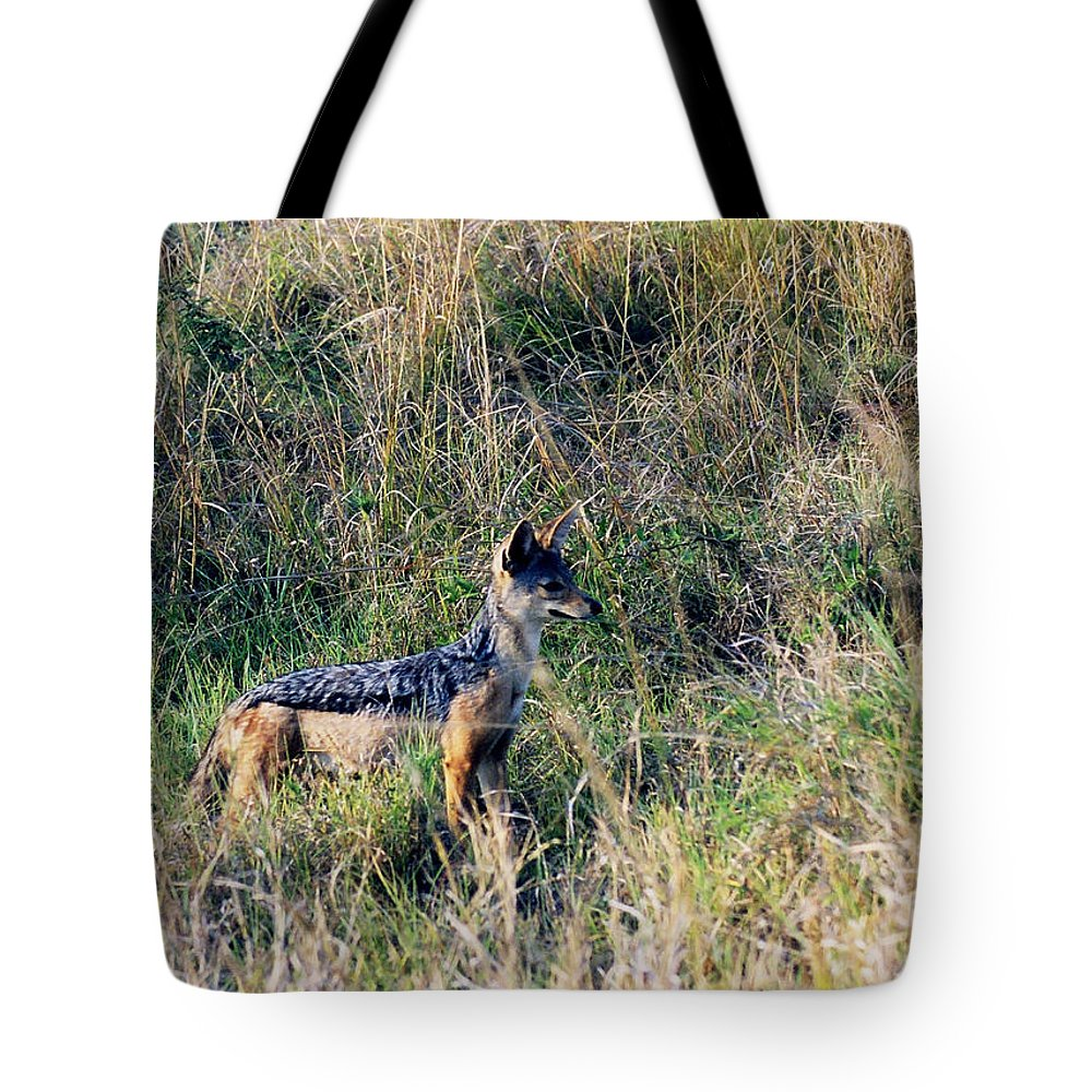 Art Tote Bag featuring the photograph Alert Jackal by Belinda Greb