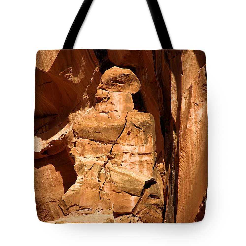 Alien Encounter Tote Bag featuring the photograph Alien Encounter by Adam Jewell