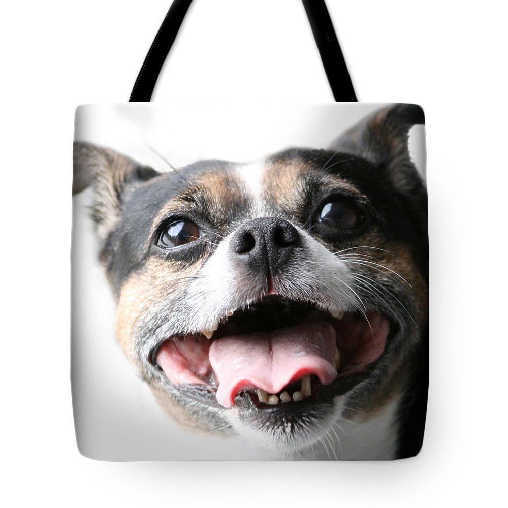 Jack Russell Tote Bag featuring the photograph Almost A Jack Russell by Kathy Clark