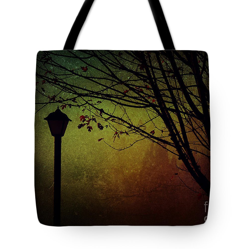 Fall Tote Bag featuring the photograph Almost Dark by Billie-Jo Miller