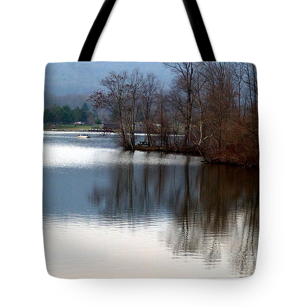 Lake Reflection Nature Park Mirror Light Tote Bag featuring the photograph Almost Painting by Vilas Malankar