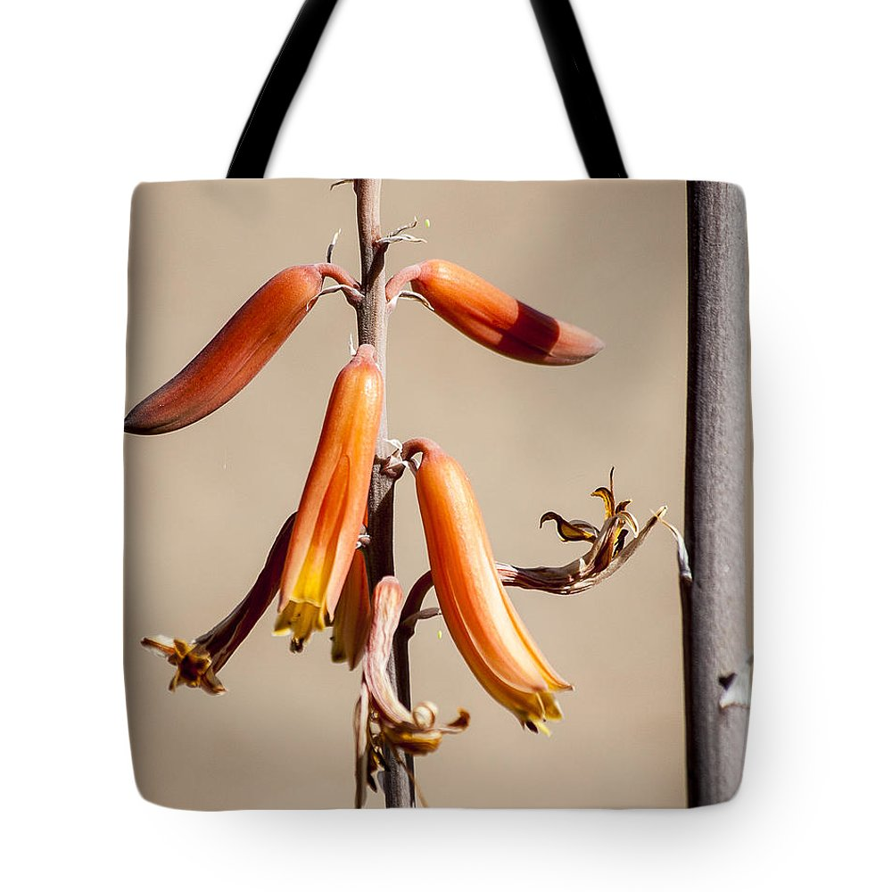 Aloe Tote Bag featuring the photograph Aloe Flower And Stem by Darcy Michaelchuk