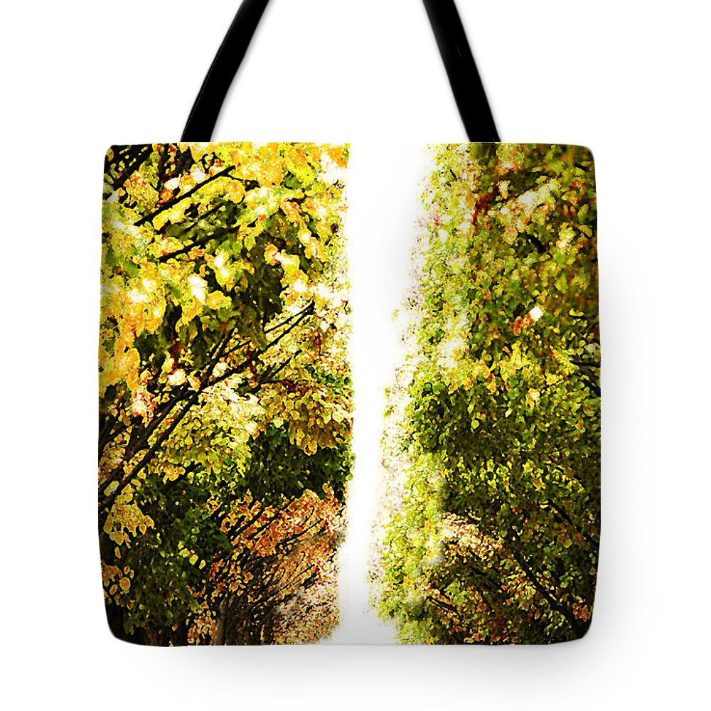 Paris Tote Bag featuring the photograph Alone In A Parisian Park by Mike Nellums