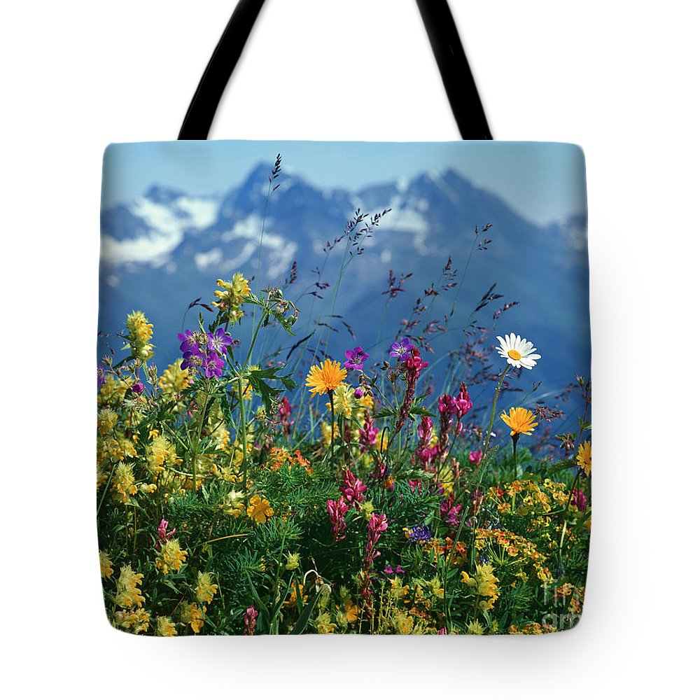 Plant Tote Bag featuring the photograph Alpine Wildflowers by Hermann Eisenbeiss and Photo Researchers