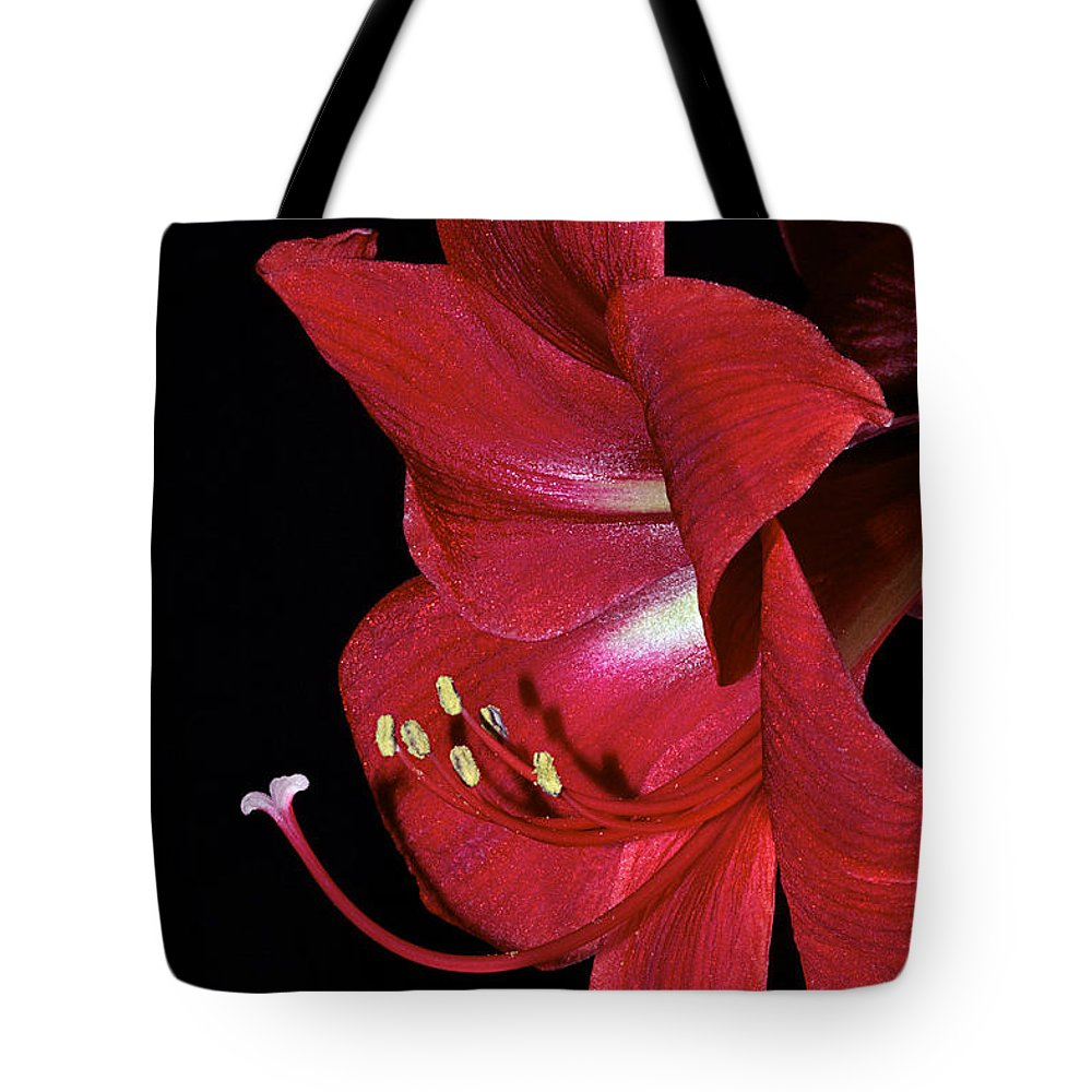 Amaryllis Tote Bag featuring the photograph Amaryllis Flower Side View by Phyllis Denton