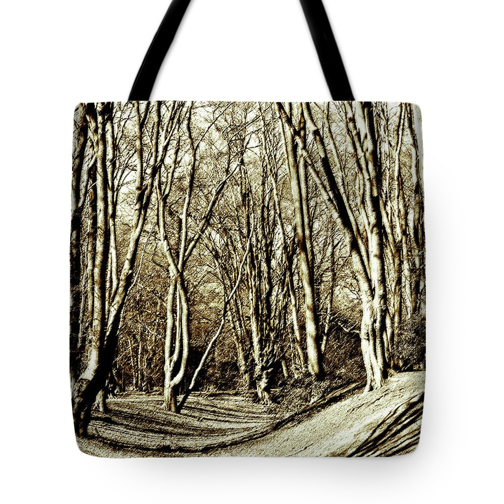 Fort Tote Bag featuring the digital art Ambresbury Banks Iron Age Fortification by David Pyatt