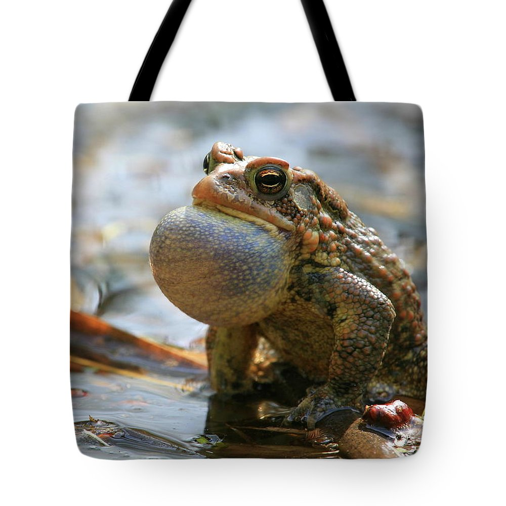 Toad Tote Bag featuring the photograph American Toad Croaking by Bruce J Robinson