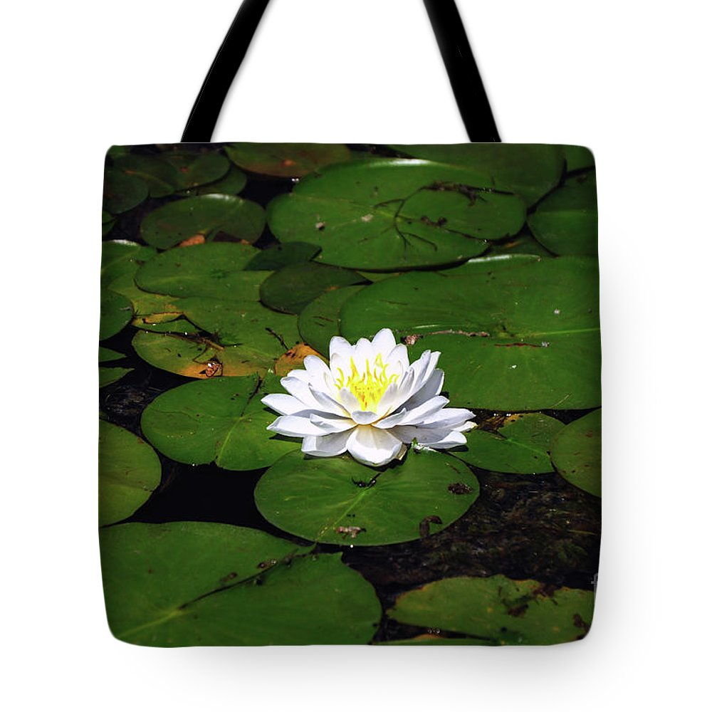 Lily Tote Bag featuring the photograph American White Waterlily by Ronald Grogan