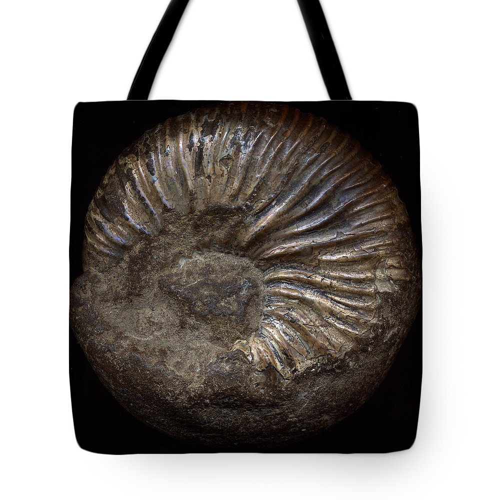 Fossil Tote Bag featuring the photograph Ammonite Back by David Kleinsasser