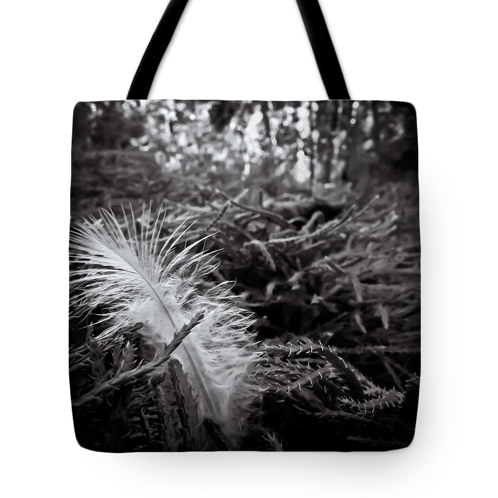 Feather Tote Bag featuring the photograph Among Thorns by Jessica Brawley
