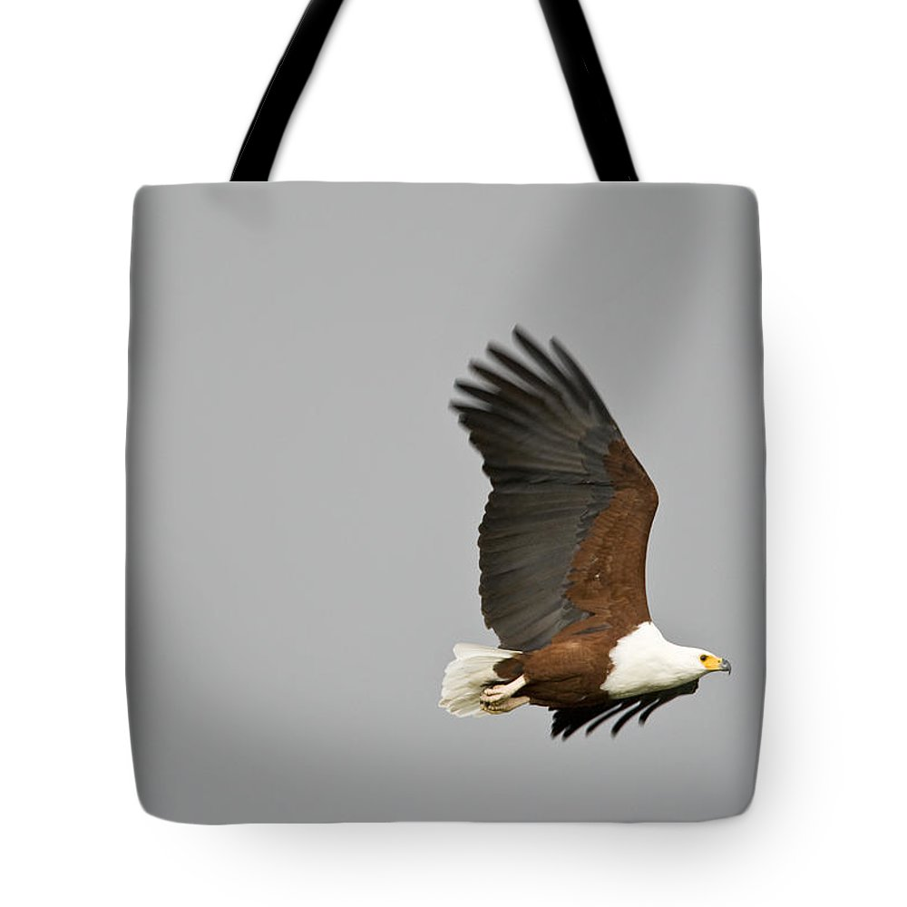 Africa Tote Bag featuring the photograph An African Fish Eagle In Flight by Roy Toft