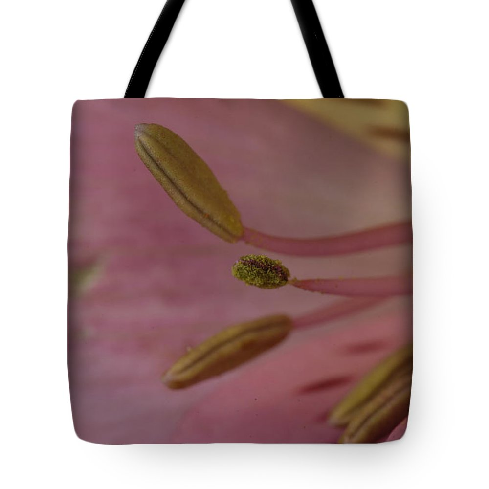 Photography Tote Bag featuring the photograph An Alstroemeria Abelia Grandiflora by Joel Sartore