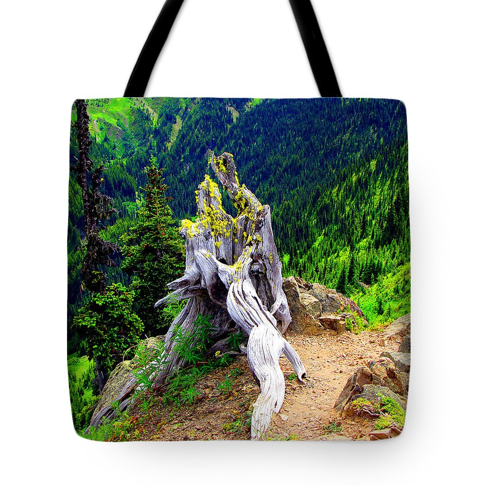 Forest Tote Bag featuring the photograph Ancient And On The Edge by Marie Jamieson