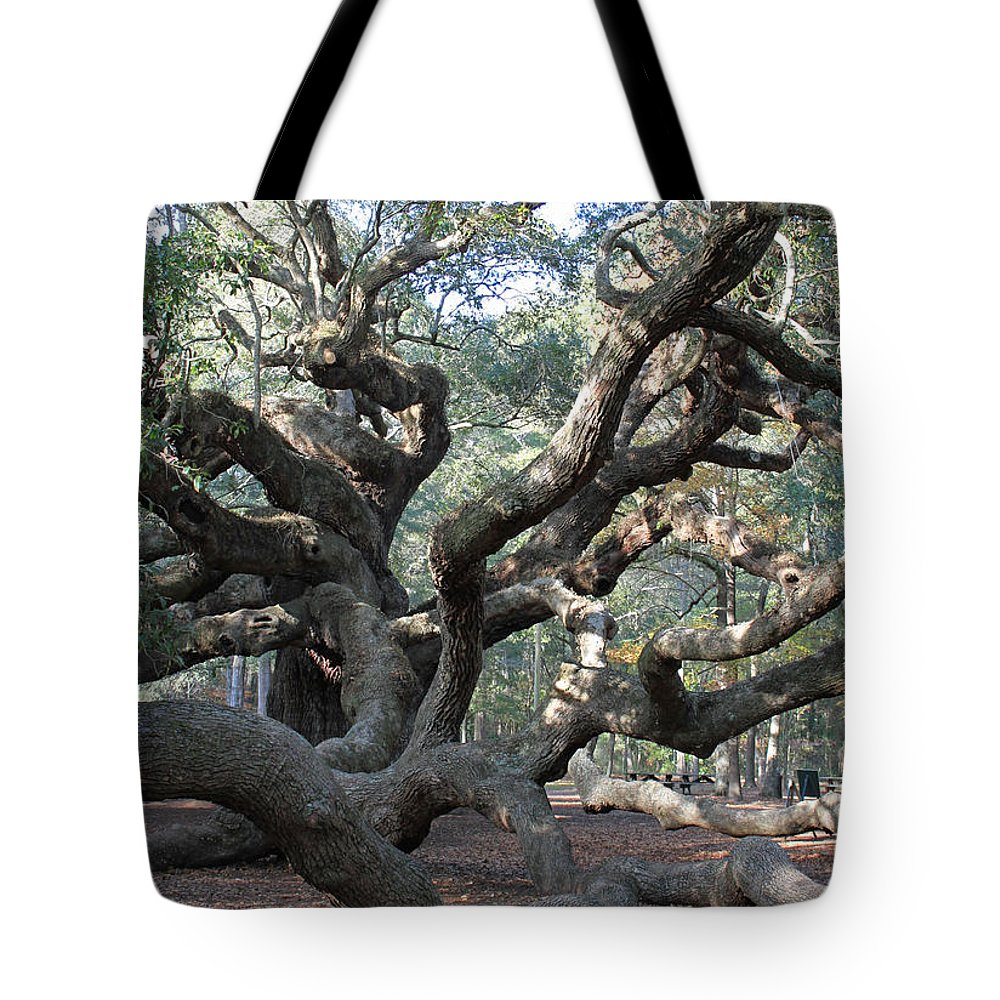 Tree Tote Bag featuring the photograph Angel Oak - Johns Island Sc by Suzanne Gaff