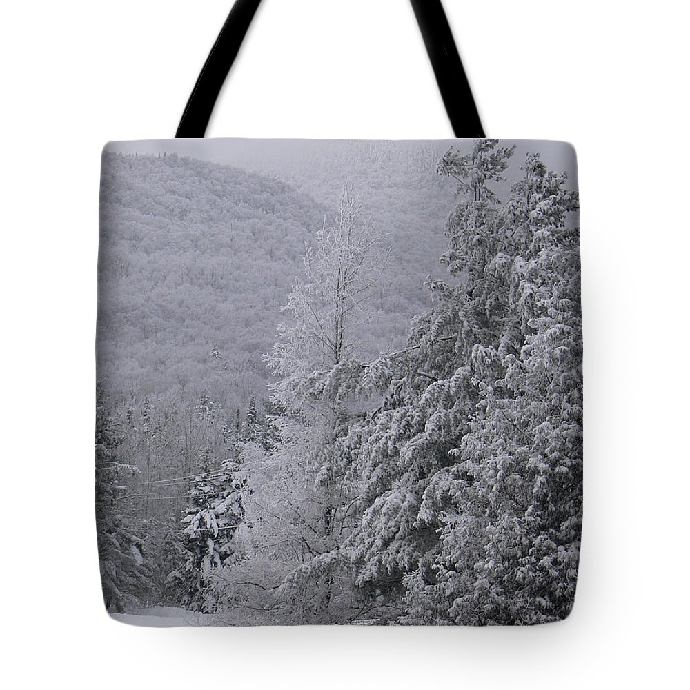 Winter Tote Bag featuring the photograph Appello by Natalie LaRocque