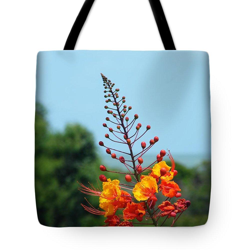 Wildlife Tote Bag featuring the photograph Aransas Nwr Texas Coast by Lizi Beard-Ward