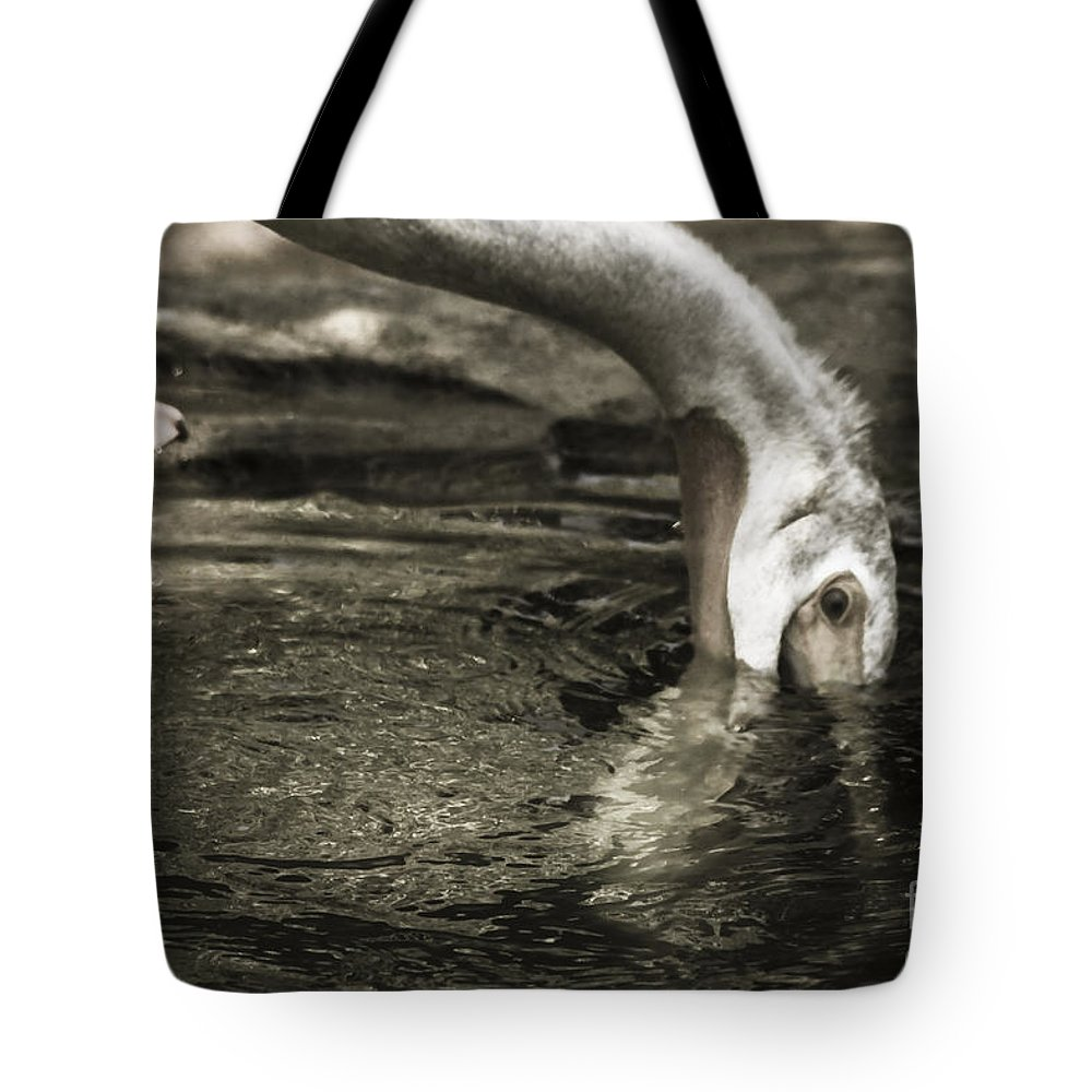 Water Fowl Tote Bag featuring the photograph Are You Getting This by Kim Henderson